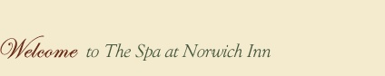 The Spa at Norwich Inn is located on an expansive 42 acre property in the woodlands of eastern Connecticut. We are an intimate overnight retreat and home to an elegant full-service spa, fitness center and a gourmet restaurant.