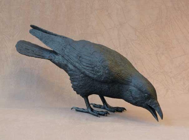 Best black birds ravens crows images on pinterest