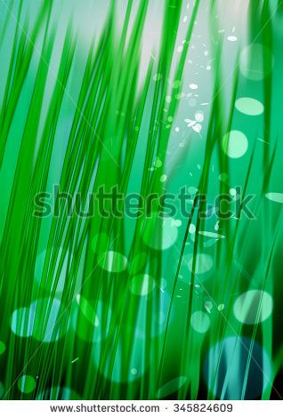 stock-photo-green-grass-green-lights-and-rays-on-the-black-background-textured-lighting-background-growing-345824609.jpg (318×470)