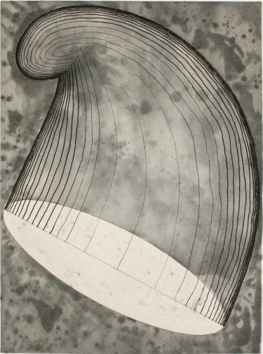 Martin Puryear - Paulson Bott Press