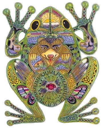 Frog symbolizes Luck, Purity, Rebirth, Renewal, Fertility, Healing, Metamorphosis, Transitions, Dreaming, Opportunity, Intermediary