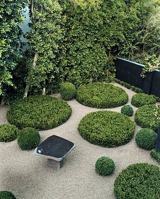 Gravel and box: Garden Ideas, Garden Design, Landscaping, Gardens, Modern Garden, Garden, Luna Garden