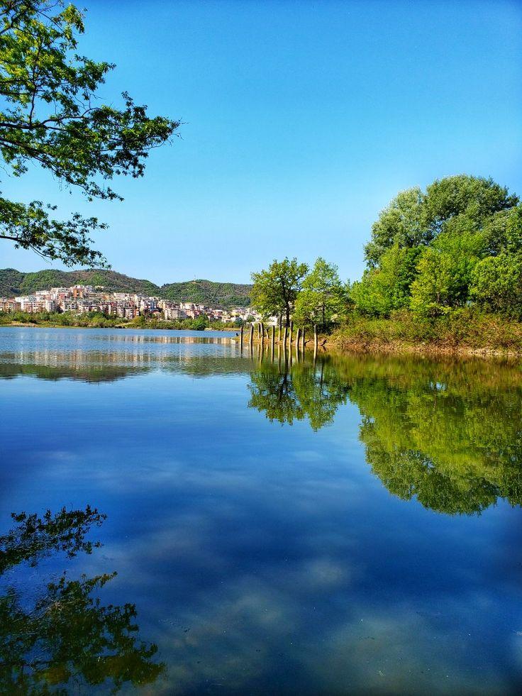 Reflection at lake Tirana albania, Albania, Tirana
