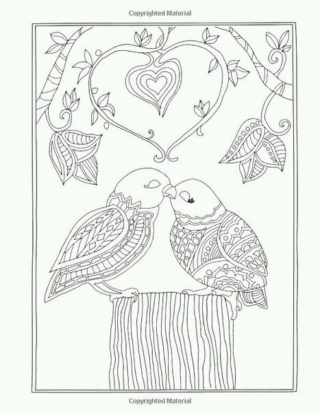 Beautiful Relaxation Coloring Book For Everyone Danny Dimm