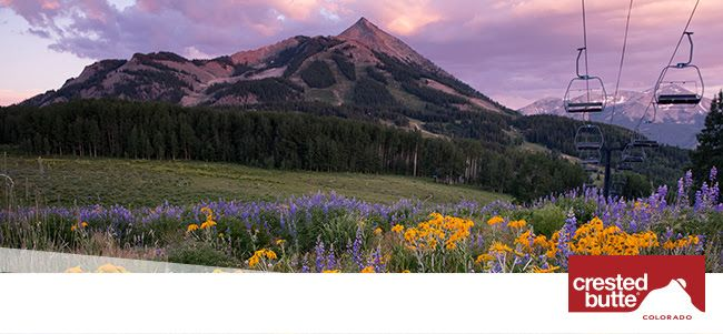 Success Form For Crested Butte Collection Contact Form Crested Butte Vail Resorts Mountain Resort