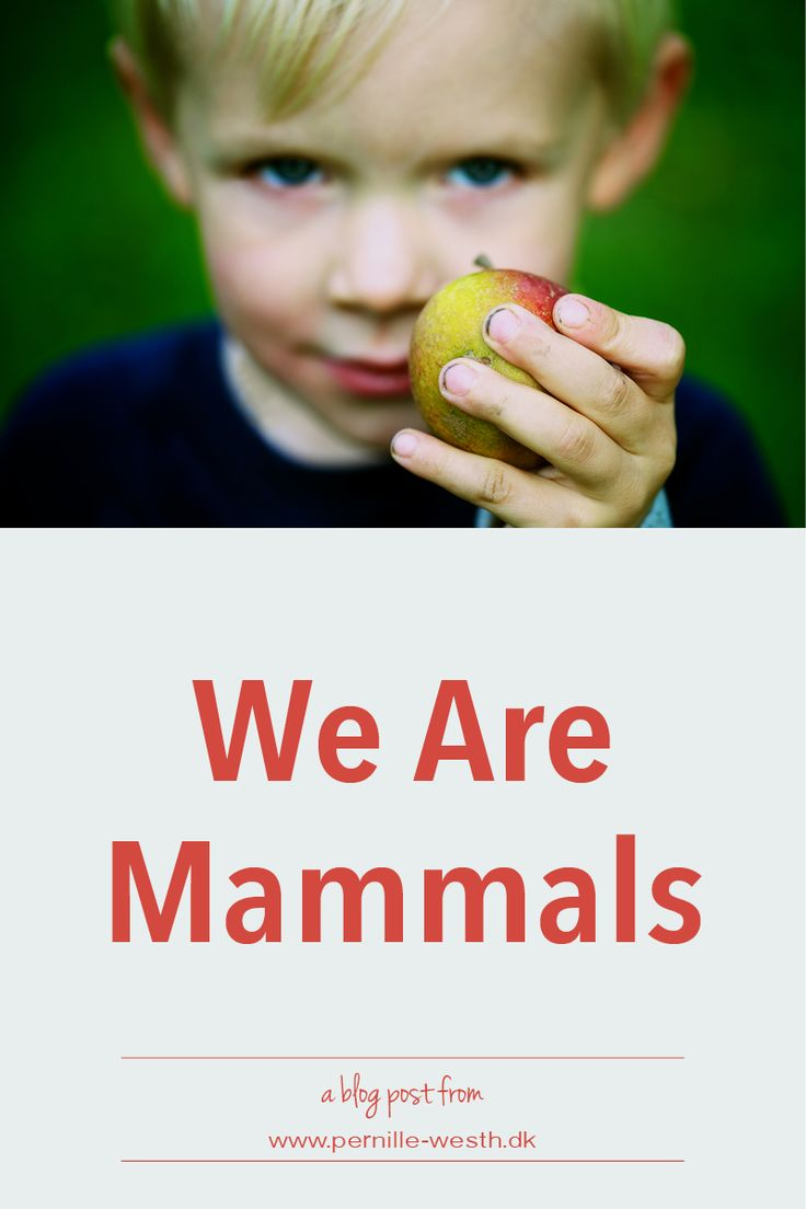 Do you want your children to behave in a certain way? The easiest way - and the most effective way - to do this is to act it out yourself. You do the behavior you want your child to have. We are mammals, yes, we are humans having a very large vocabulary, but we are also mammals. Read my full blog post; http://www.pernille-westh-blog.com/single-post/2016/07/06/We-Are-Mammals