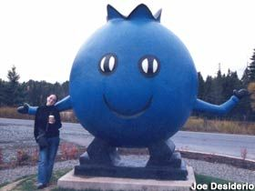 The Giant Blueberry / The Blueberry Man - weird roadside attraction in Oxford, Nova Scotia