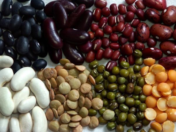 Beans are pretty sweet cheap eats