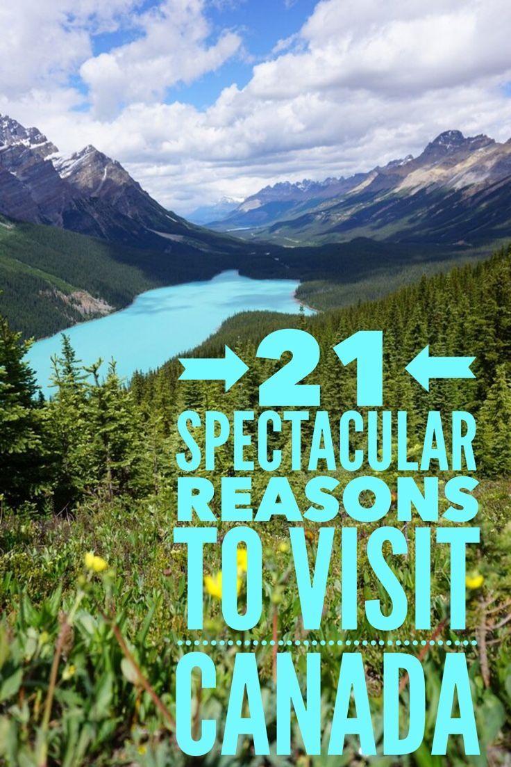 A stunning Canada road trip through Banff and Jasper National Parks. http://finelinedrivingacademy.co.uk
