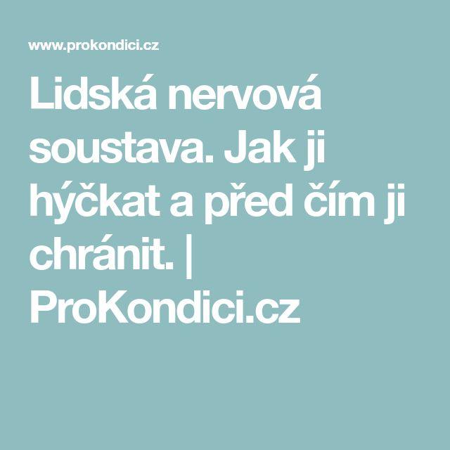 Lidská nervová soustava. Jak ji hýčkat a před čím ji chránit. | ProKondici.cz