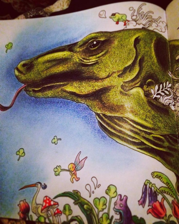 Doodle Coloring Books Adult Art Lizards Reptiles Color Pencil Doodles