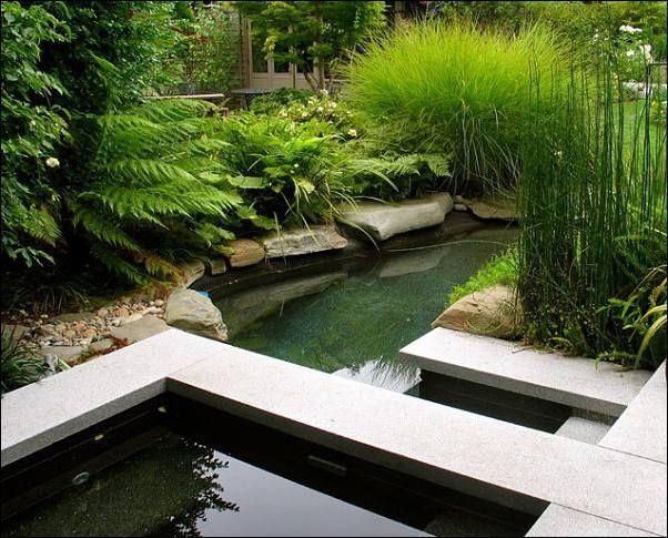 74 besten Pflanzen Bilder auf Pinterest Blumen, Garten und - pergola im garten ruckzugsort bluhend