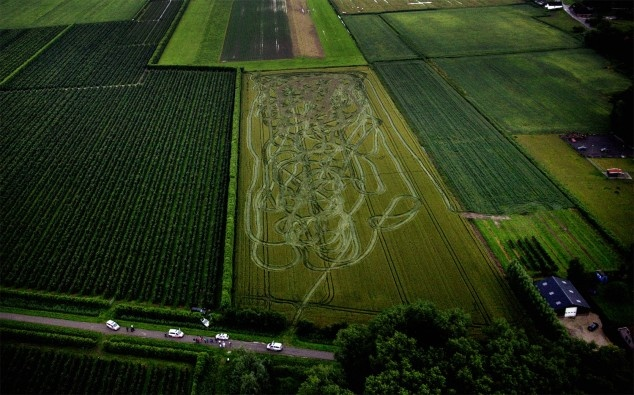 This is a really cool picture I must say. //The result of two cop cars chasing a coke-addled driver around in a corn field...