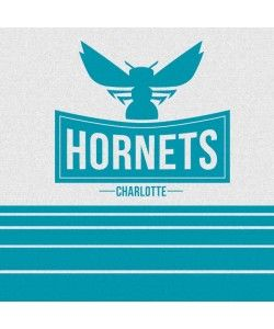 Charlotte Hornets Static PlayStation Gaming Skins