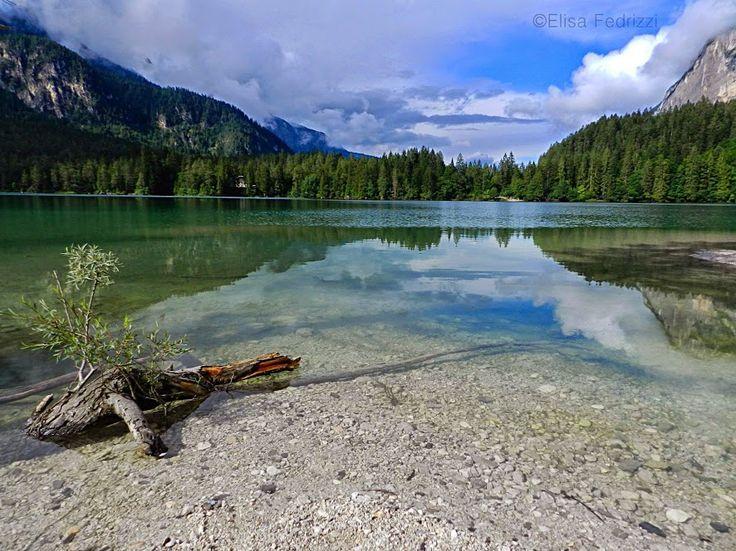 Lago di Tovel, lago alpino situato tra le maestose Dolomiti del Brenta, nel Parco Naturale Adamello Brenta. This lake is common called Lago Rosso Sangue
