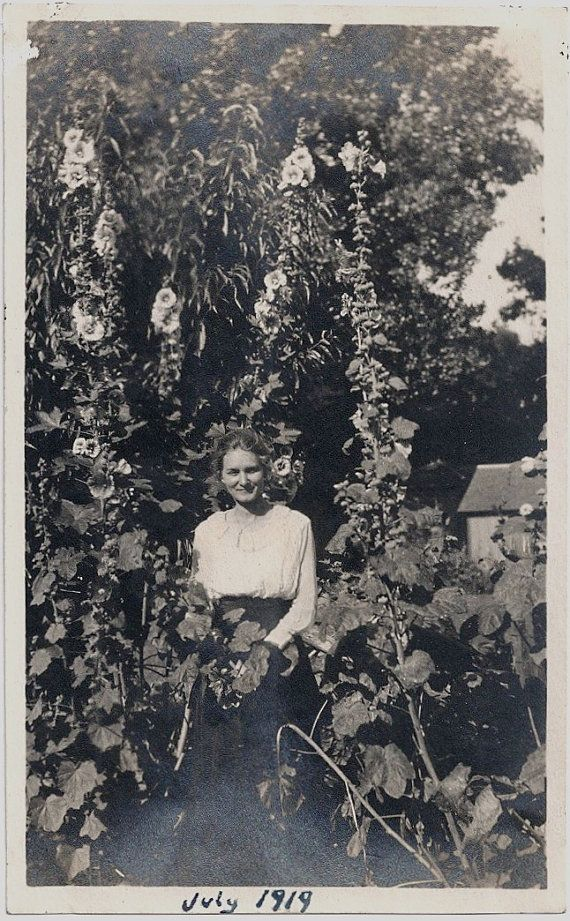 Old Photo Woman Standing in Garden with Hollyhock Flowers 1919 Photo