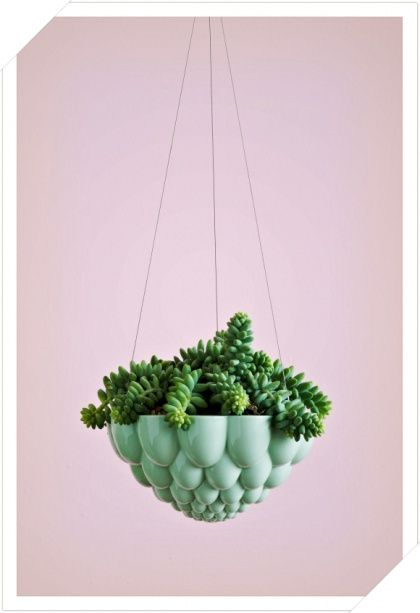 Perfect for our city garden -- jelly #planters via Angus & Celeste for $59