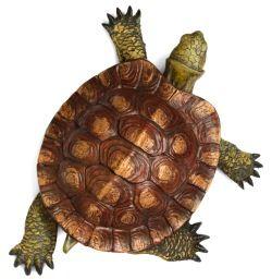 красноухая черепаха вид сверху