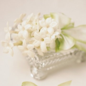 Delicate white stephanotis is very fragrant and make a darling corsage for mothers and grandmothers.