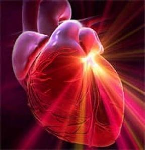 Existe un lugar físico dentro de nuestro corazón que dispone de una singularidad.  El corazón posee una pequeña cavidad entre los dos ventrículos, que tiene el campo electromagnético más intenso de nuestro cuerpo. #Corazón #Singularidad #Love