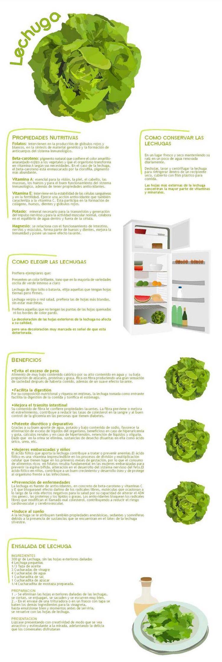 La lechuga: propiedades nutritivas y beneficios para la salud. #infografia #lechuga