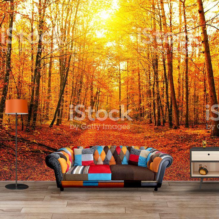 Fotobehang Bos in herfstkleuren | Maak het jezelf eenvoudig en bestel fotobehang voorzien van een lijmlaag bij YouPri om zo gemakkelijk jouw woonruimte een nieuwe stijl te geven. Voor het behangen heb je alleen water nodig! #behang #fotobehang #print #opdruk #afbeelding #diy #behangen #bos #natuur #oranje #herfst #woud #herfstkleuren #seizoen