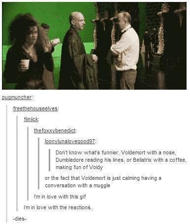 Omigosh best link everXD all Harry potter tumblr posts