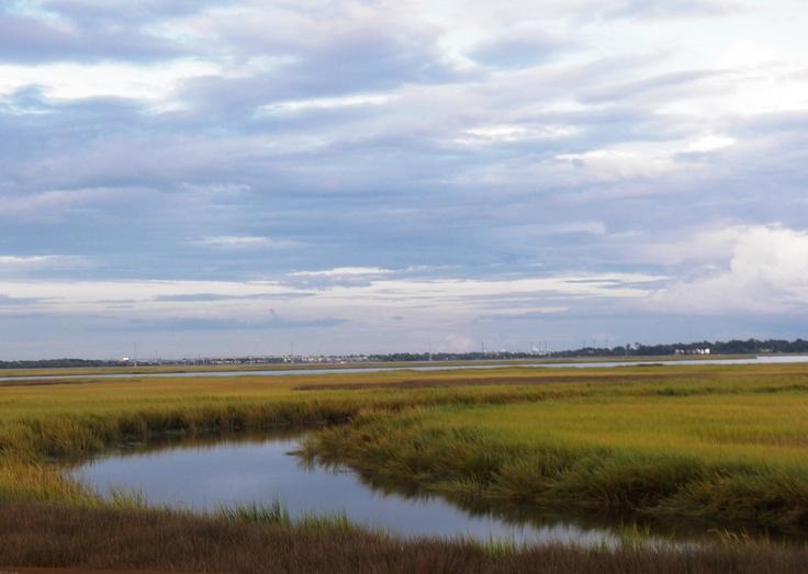 Marshlands - James Island, SC (Sept 2012)