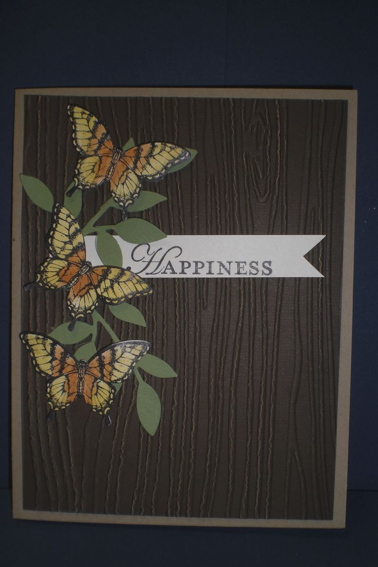 """June Make-n-Take - """"Papillon Potpourri"""" Sorry this is so dark.  This is a really beautiful card."""