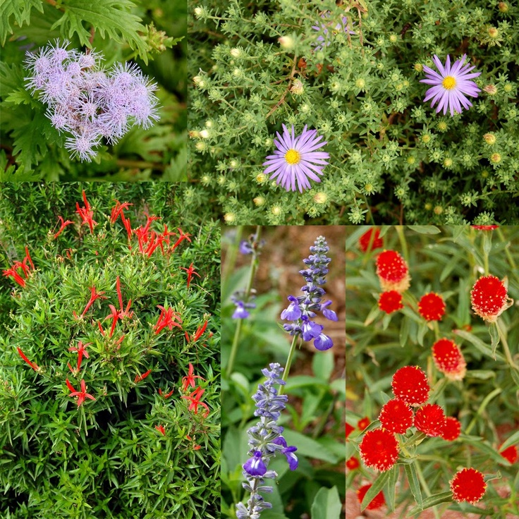 22 Best Great Garden Ideas Images On Pinterest Backyard
