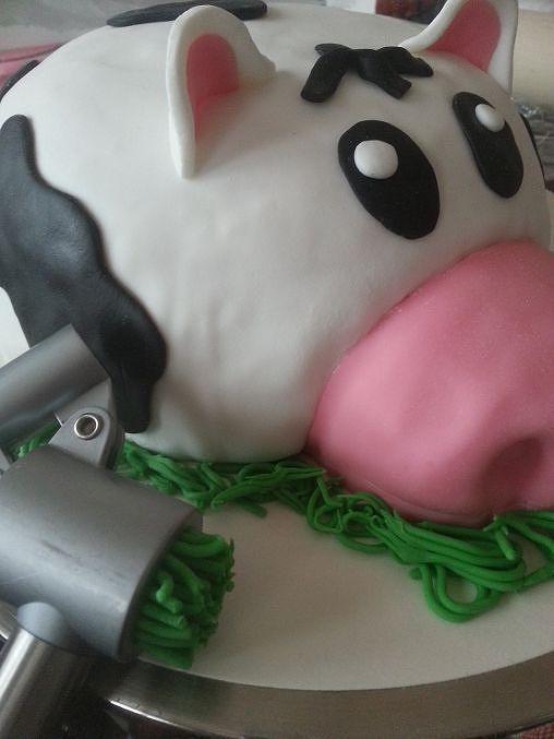 Viikonlopuksi lehmäkakkua! - Starbox