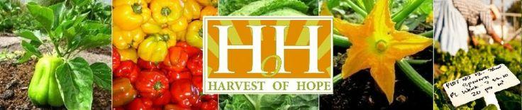 Organic Veg Directory - Friends of Harvest of Hope | Harvest of Hope
