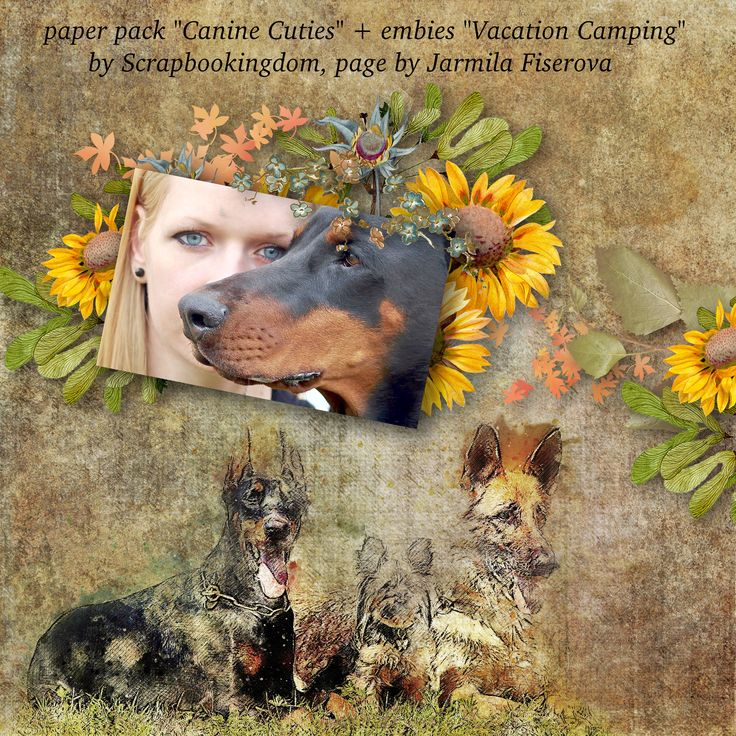 """paper pack """"Canine Cuties"""" by Scrapbookingdom, https://www.etsy.com/listing/557683377/scrapbooking-digital-papers-dog-theme?ref=shop_home_active_1, embies """"Vacation Camping"""", photo Yama, Pixabay"""