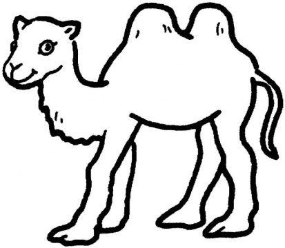 camel coloring pages 2