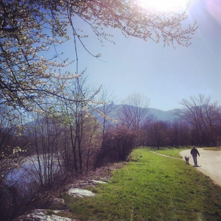 Parco del Meisino Torino