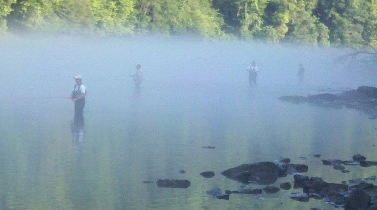 30 best images about midway usa trout fishing on pinterest for Fishing resorts in arkansas