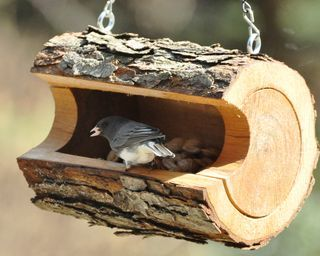 hollowed out log bird feeder...love this!