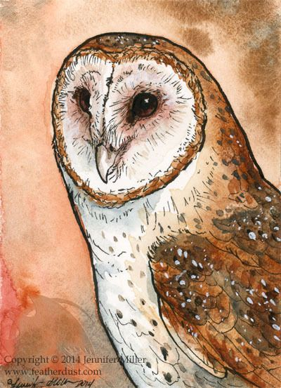 Barn Owl Mini Aquarell