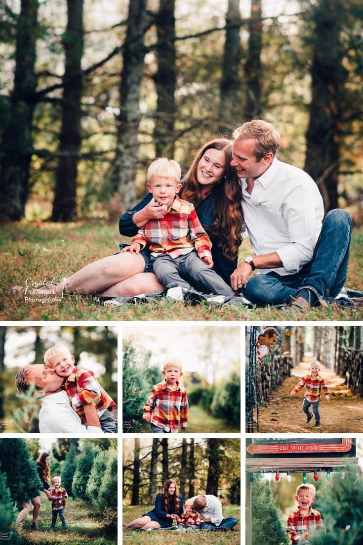 Are Mini Sessions Right For You Nashville Family Photographer In 2020 Holiday Mini Session Mini Sessions Family Photographer