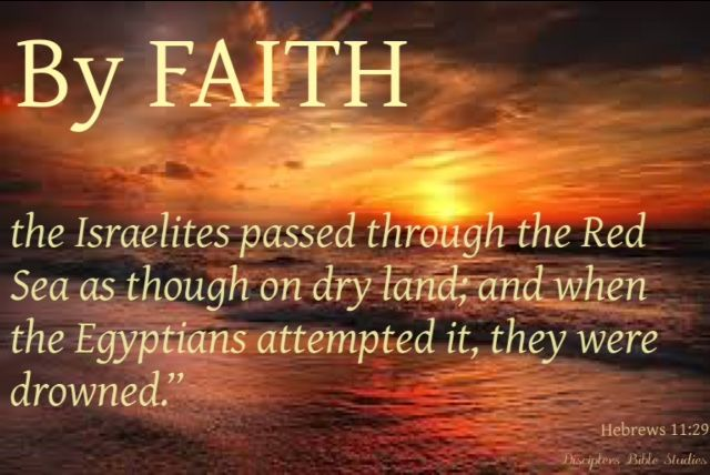 Faith goes forward - Hebrews 11:29 | Faith, Bible study, Hebrews 11