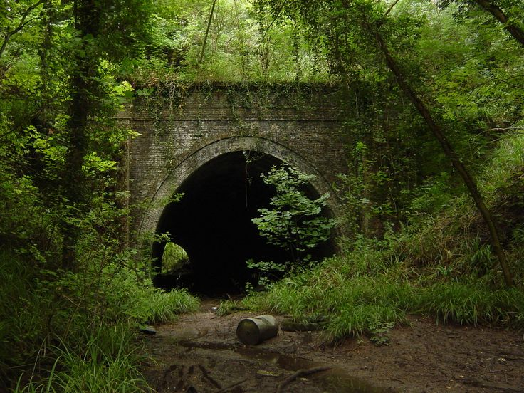 etchinghill kent railway tunnel on the abandoned Elham Valley Railway Line.Too dark and scary to explore when we were young!