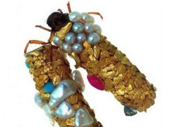 A French artist has stumbled upon a real-life alternative to Cinderella's ball-gown-sewing mice: spectacular jewelry crafted by bugs. Hubert Duprat employs: