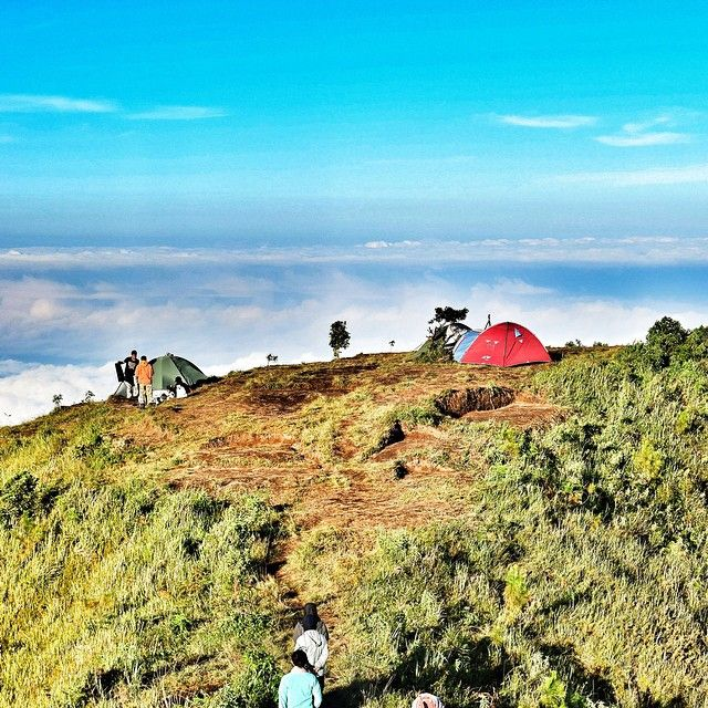 Sometimes life is about risking everything for a dream no one can see but YOU ▃▃▃▃▃▃▃▃▃▃▃▃▃▃▃▃▃▃▃▃ Location : Mt. Andong, Magelang ▃▃▃▃▃▃▃▃▃▃▃▃▃▃▃▃▃▃▃▃ #amazingnusantara #wu_asia #wu_indonesia #indonesiagram #instanusantara #mybest_indonesia #instanusantaradiy #igworldclub #pict_lovers #photo_storia #tgif_nature #indonesia_photography #ig_indonesia_ #ig_worldclub #instagallery_ina #backpacker_photography #bns_members #1001square #bns_sky #in2nature #fosign_ ▃▃▃▃▃▃▃▃▃▃▃▃▃▃▃▃▃▃▃▃