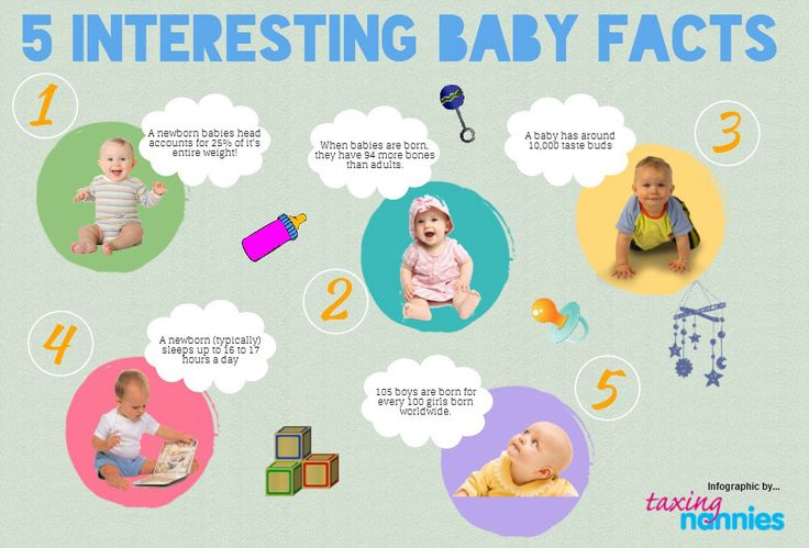 5 Interesting Baby Facts Infographics Lightscap3s Com