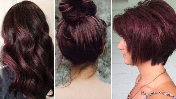 Баклажановые оттенки волос. Фиолетовая Далия
