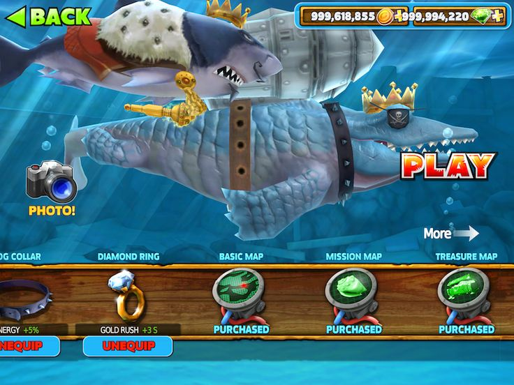 hungry shark evolution how to get map