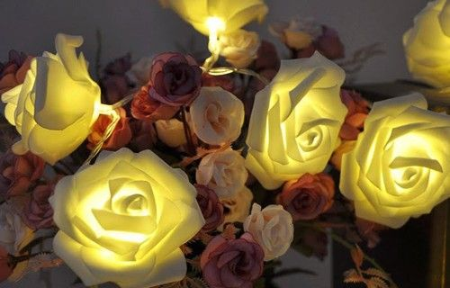 20 Warm White LED Battery Operated Rose Flower Fairy Lights