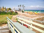 Strandvakantie Agia Marina    Chania   Kreta
