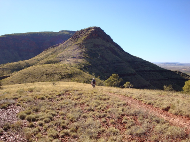 Hiking Mt Bruce - Karijini NP