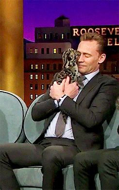 I can't with this Hiddleston. http://hiddleston-daily.tumblr.com.